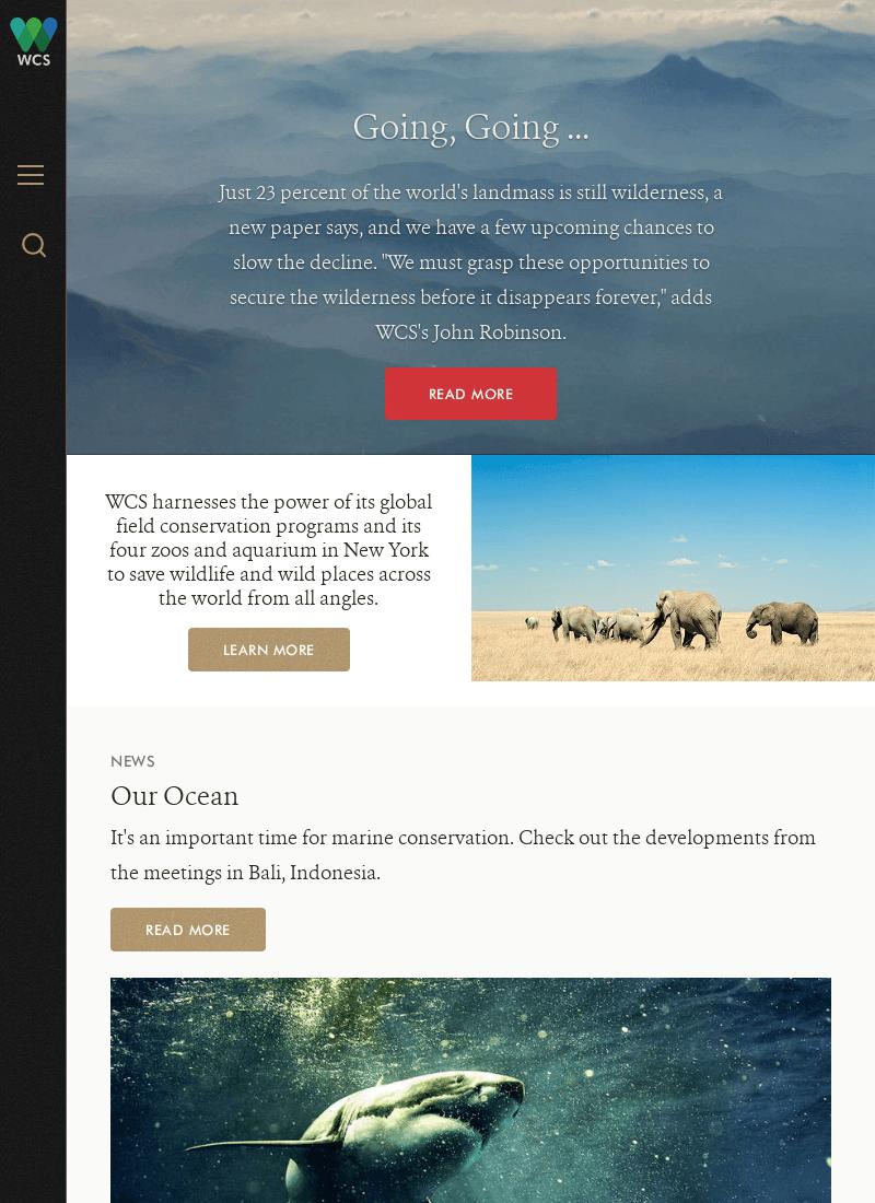 wcs site web engleza