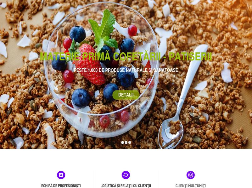 steldico site web prezentare promovare online